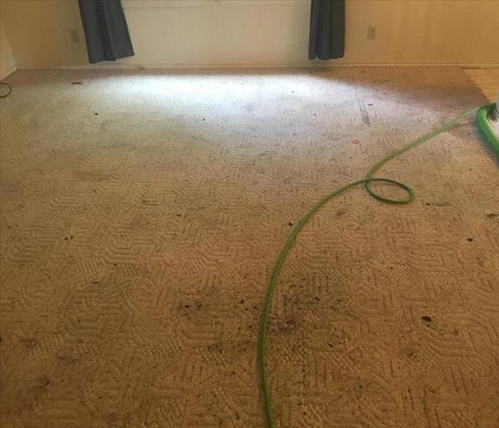 Carpet Cleaning in San Antonio - what a difference SERVPRO makes! Before