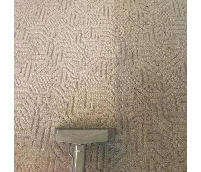 Carpet Cleaning - what a difference SERVPRO makes!