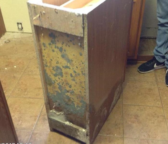 Ongoing Leak in Kitchen Leads to Mold Growth